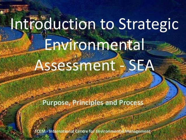 Introduction to Strategic Environmental Assessment - SEA Purpose, Principles and Process 1 ICEM - International Centre for...