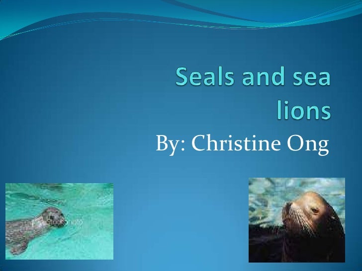 Seals and sea lions<br />By: Christine Ong<br />