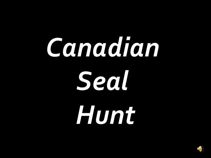 Canadian Seal Hunt PSA