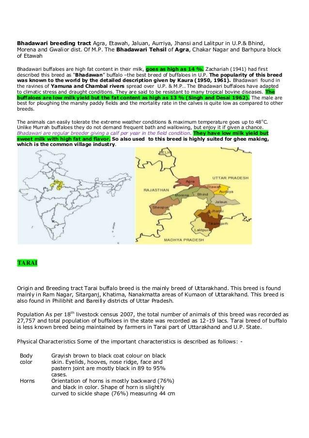 Bhadawari breeding tract Agra, Etawah, Jaluan, Aurriya, Jhansi and Lalitpur in U.P.& Bhind,Morena and Gwalior dist. Of M.P...