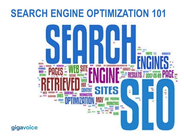 Search Engine Optimization 100