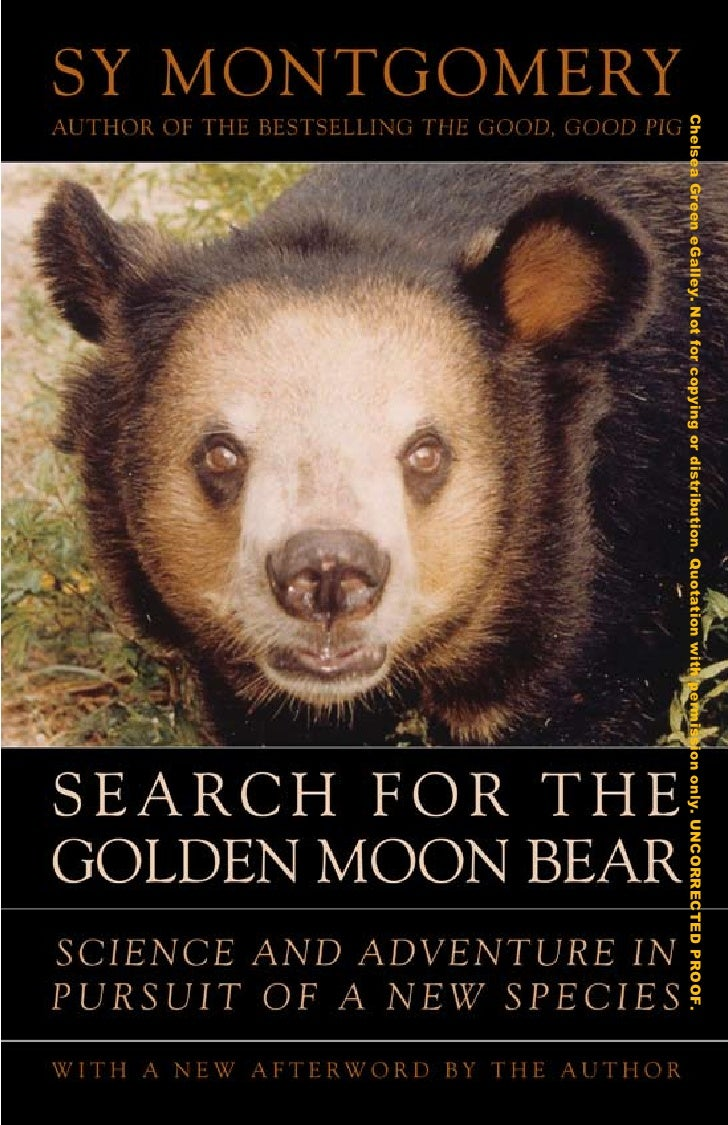Search For the Golden Moon Bear Preview