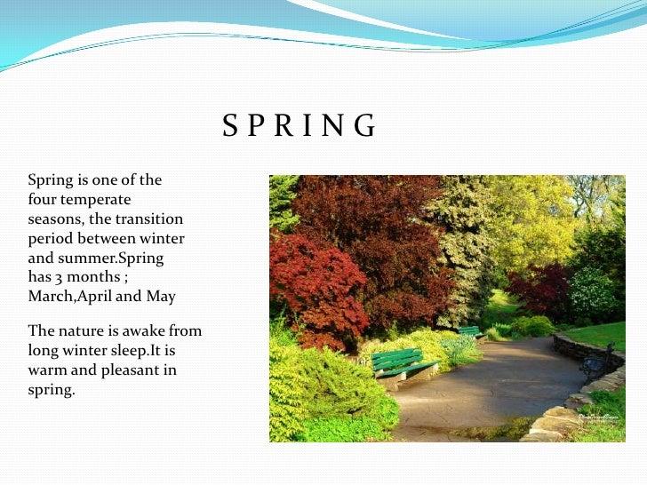 Spring Season Essay