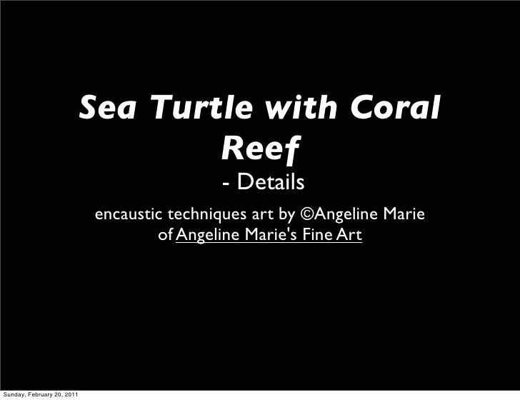 Sea Turtle with Coral                                    Reef                                            - Details        ...