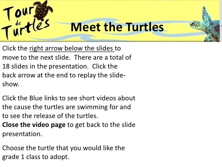 Meet the Turtles<br />Click the right arrow below the slides to move to the next slide.  There are a total of <br />18 sli...
