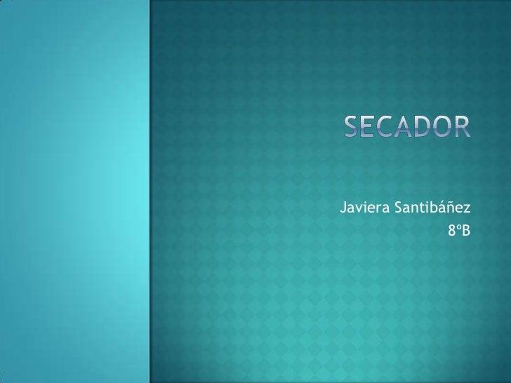 Javiera Santibáñez               8ºB