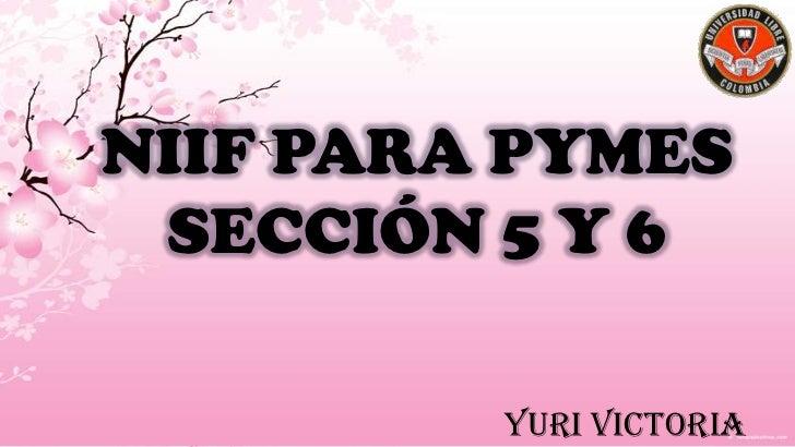 NIIF PARA PYMES SECCIÓN 5 Y 6         Yuri Victoria