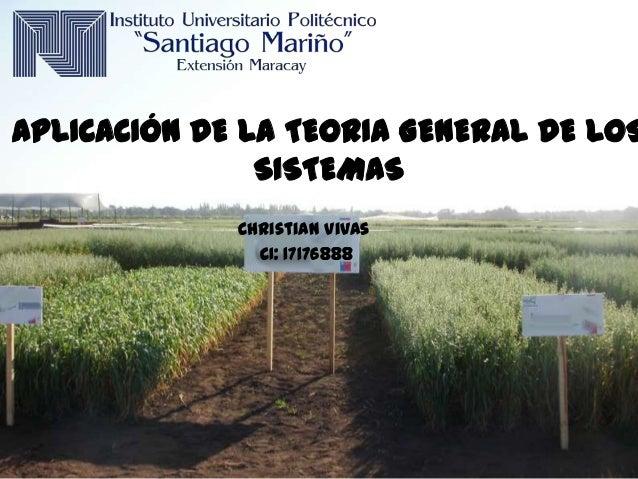APLICACIÓN DE LA TEORIA GENERAL DE LOS SISTEMAS Christian Vivas CI: 17176888