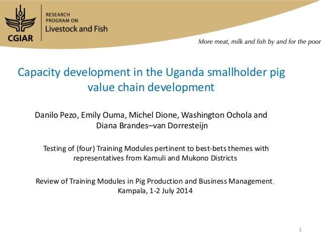 Capacity development in the Uganda smallholder pig value chain development Danilo Pezo, Emily Ouma, Michel Dione, Washingt...
