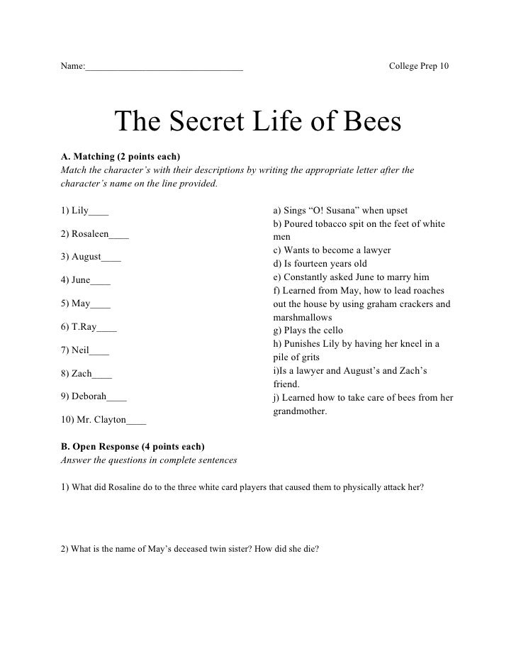essay questions on secret life of bees