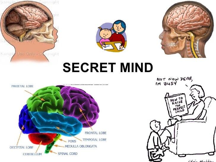 SECRET MIND