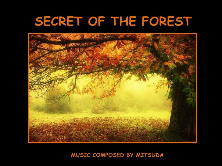 SECRET OF THE FOREST MUSIC COMPOSED BY MITSUDA