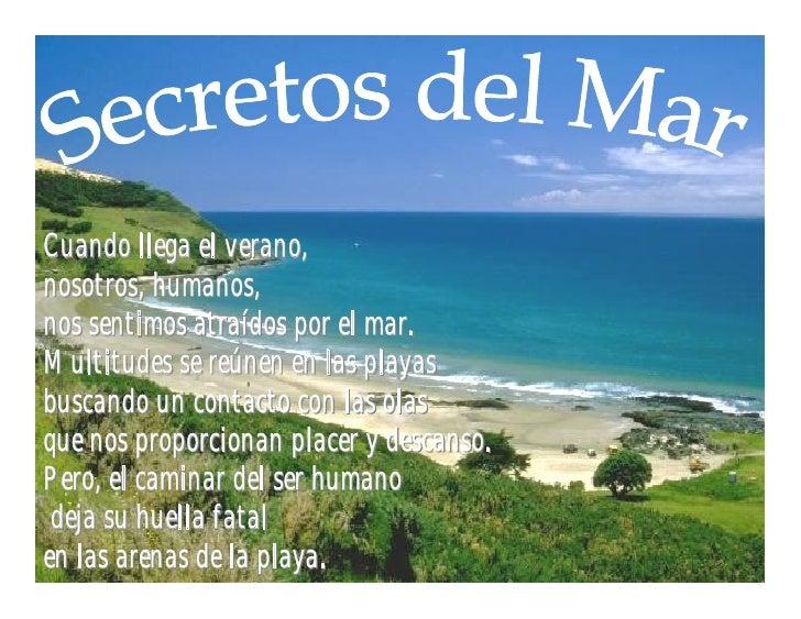 Cuando llega el verano, nosotros, humanos, nos sentimos atraídos por el mar. Multitudes se reúnen en las playas buscando u...