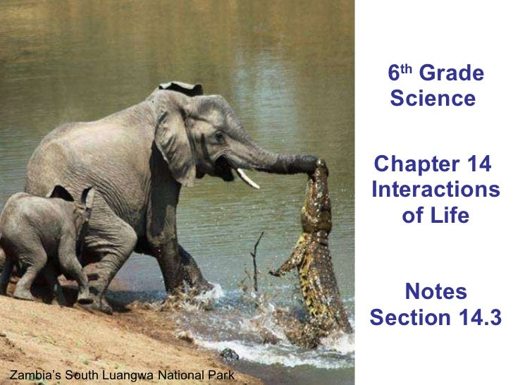 6 th  Grade Science  Chapter 14  Interactions of Life Notes Section 14.3 Zambia's South Luangwa National Park