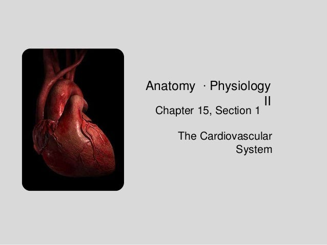 Anatomy ∙ Physiology II Chapter 15, Section 1  The Cardiovascular System