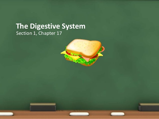 Section 1, chapter 17: digestive system