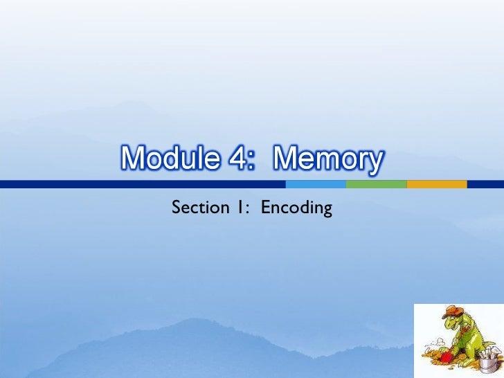 Section 1:  Encoding