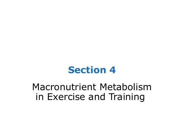 Section 4Macronutrient Metabolismin Exercise and Training