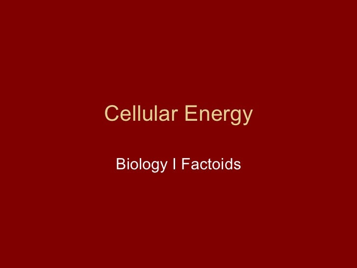 Cellular Energy Biology I Factoids