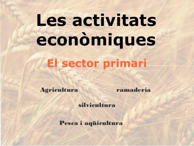 Les activitats econòmiques El sector primari Agricultura ramaderia Pesca i aqüicultura silvicultura