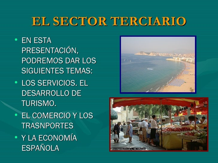 Sector Terciario IMM