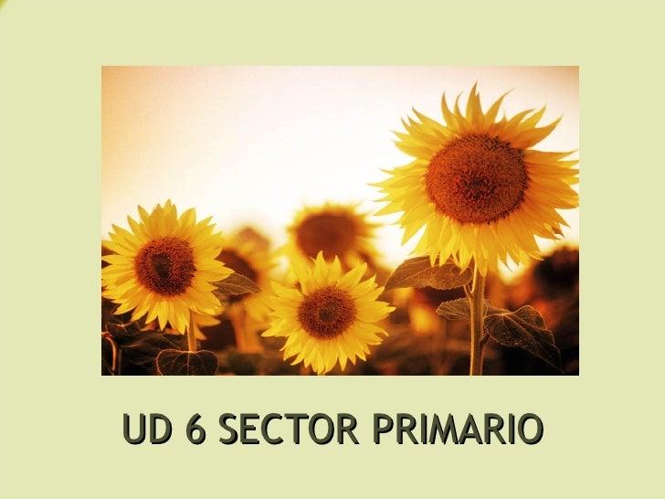 UD 6 SECTOR PRIMARIO