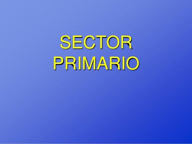 Sector primario final
