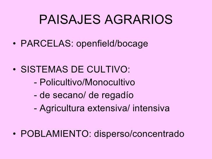 PAISAJES AGRARIOS <ul><li>PARCELAS: openfield/bocage </li></ul><ul><li>SISTEMAS DE CULTIVO:  </li></ul><ul><li>- Policulti...