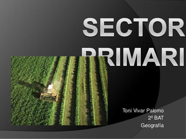 Sector primari_toni