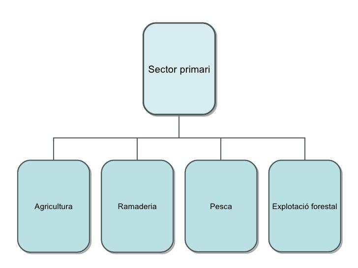 Sectors EconòMics
