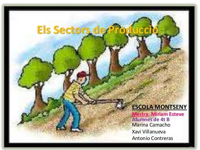 Sectors de producció