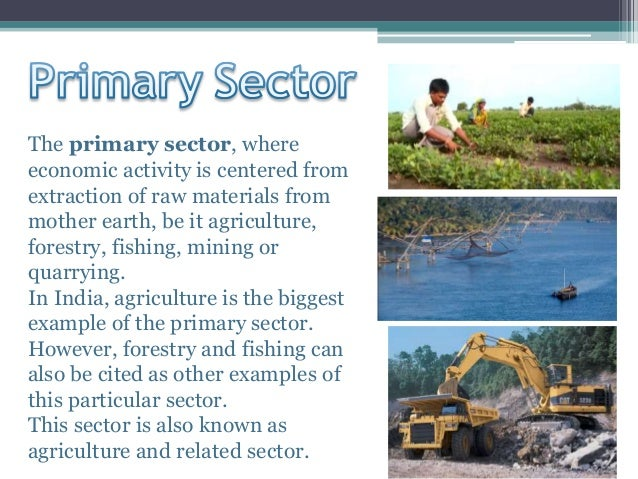 economic activities for india Unit five agriculture: primary economic activities the main economic activity of most people westward through india, southwest asia, tropical.