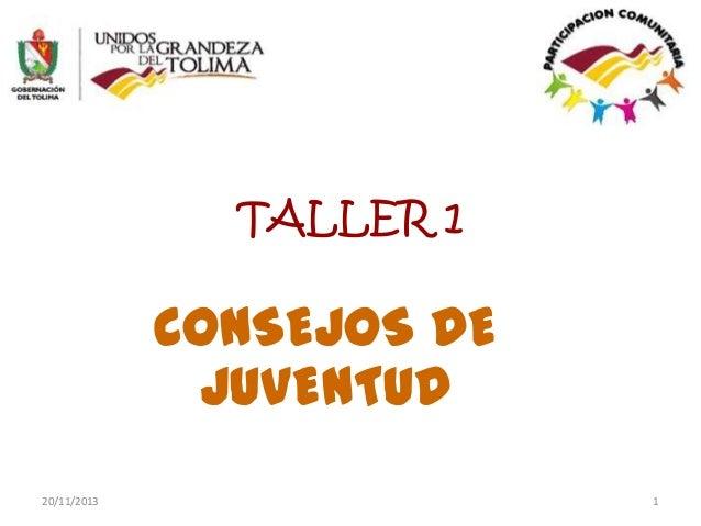 TALLER 1  CONSEJOS DE JUVENTUD 20/11/2013  1
