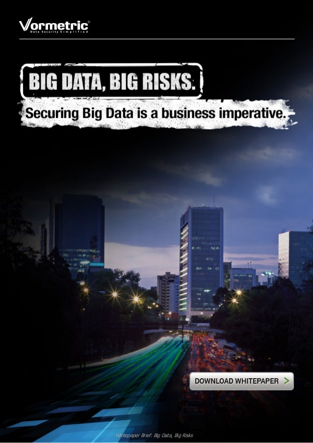 Whitepaper Brief: Big Data, Big Risks