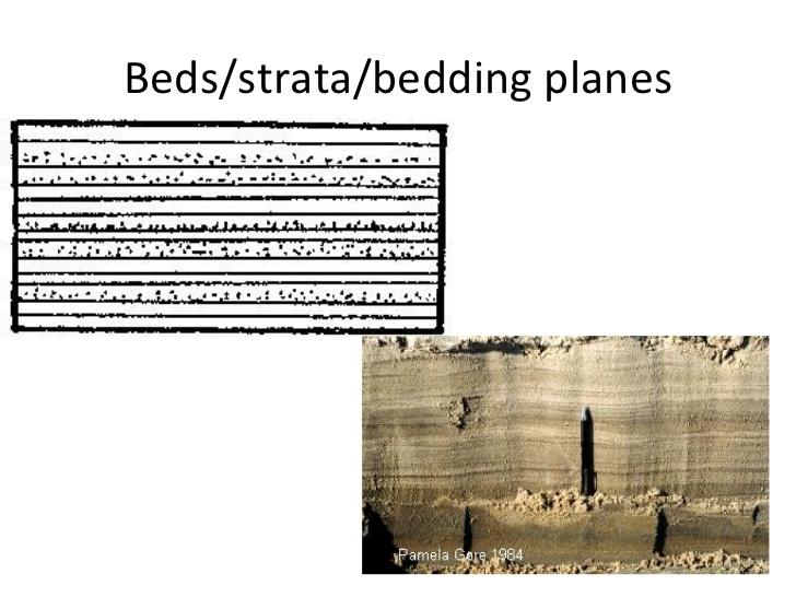 bedding sedimentary rocks 2