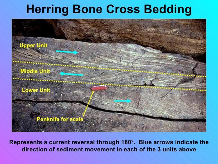 cross bedding definition geology 3
