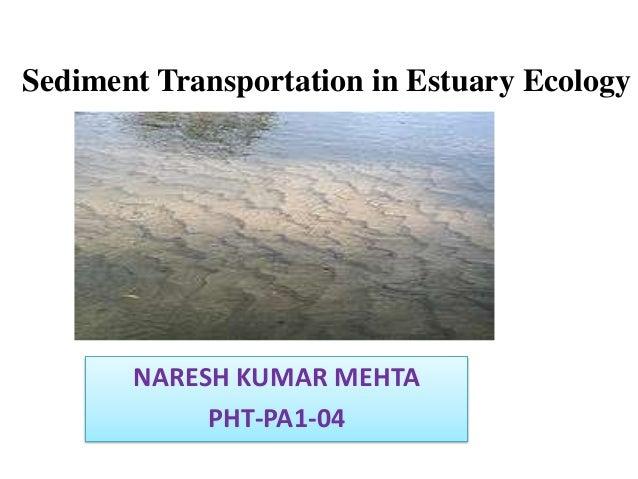 Sediment Transportation in Estuary Ecology  NARESH KUMAR MEHTA PHT-PA1-04