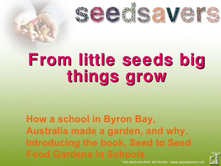 From little seeds big things grow THE SEED SAVERS' NETWORK:  www.seedsavers.net How a school in Byron Bay, Australia made ...