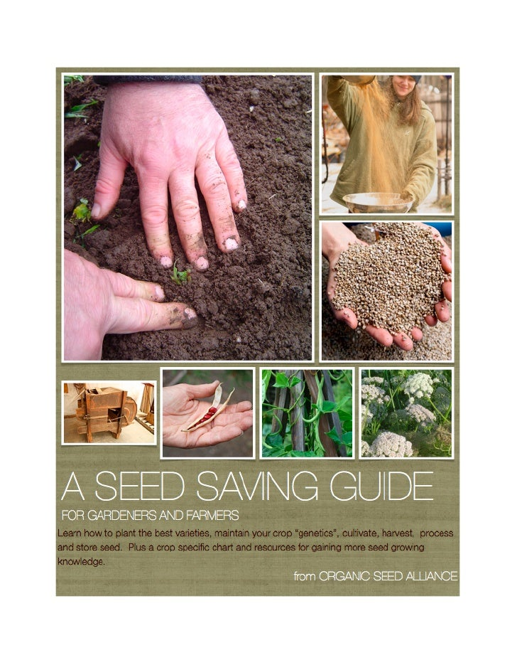 A Seed Saving Guide for Gardeners and Farmers