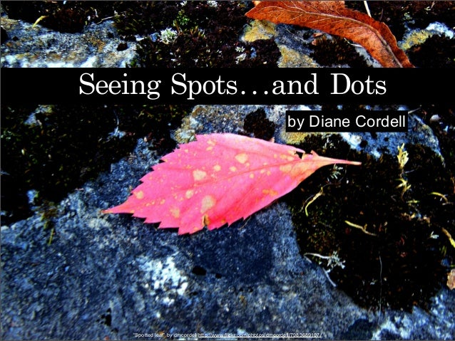 "Seeing	 Spots...and	 Dots by Diane Cordell ""Spotted leaf"" by dmcordell http://www.flickr.com/photos/dmcordell/7983689107/"