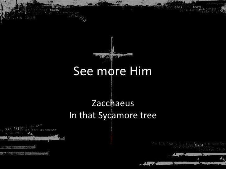 See more Him<br />ZacchaeusIn that Sycamore tree<br />