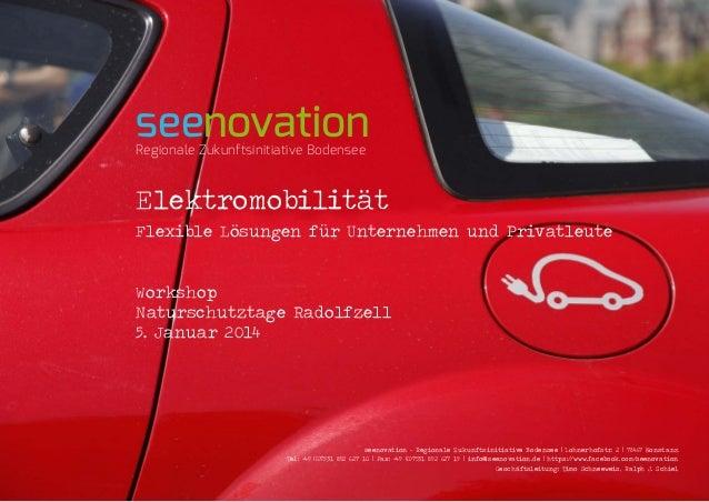 seenovation Regionale Zukunftsinitiative Bodensee  Elektromobilität Flexible Lösungen für Unternehmen und Privatleute Work...