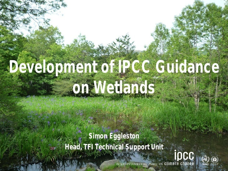 Task Force on National Greenhouse Gas InventoriesDevelopment of IPCC Guidance        on Wetlands              Simon Eggles...
