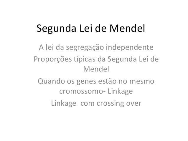 Segunda Lei de Mendel A lei da segregação independente Proporções típicas da Segunda Lei de Mendel Quando os genes estão n...