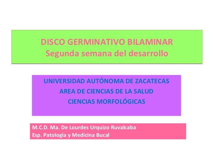 DISCO GERMINATIVO BILAMINAR    Segunda semana del desarrollo    UNIVERSIDAD AUTÓNOMA DE ZACATECAS        AREA DE CIENCIAS ...