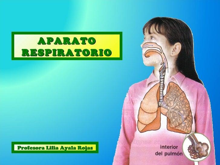 APARATO RESPIRATORIOProfesora Lilia Ayala Rojas