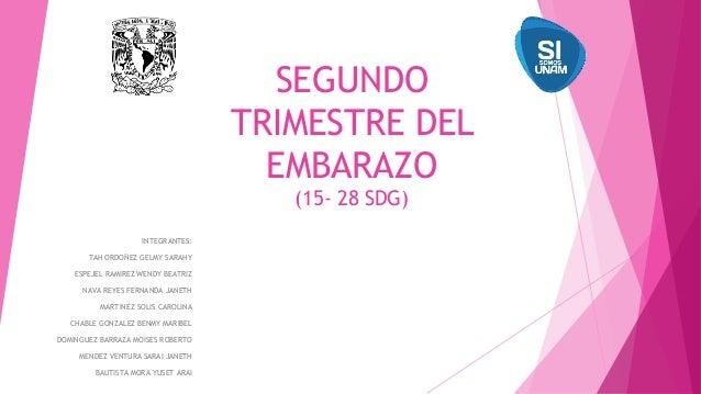SEGUNDO TRIMESTRE DEL EMBARAZO (15- 28 SDG) INTEGRANTES: TAH ORDOÑEZ GELMY SARAHY ESPEJEL RAMIREZ WENDY BEATRIZ NAVA REYES...