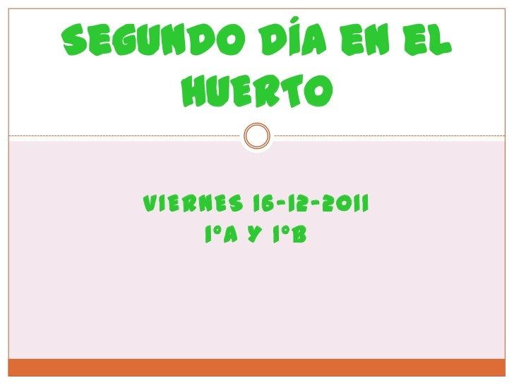 Segundo día en el     HUERTO   VIERNES 16-12-2011       1ºA Y 1ºB