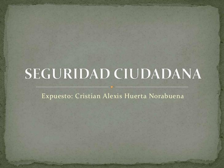 Expuesto: Cristian Alexis Huerta Norabuena<br />SEGURIDAD CIUDADANA<br />