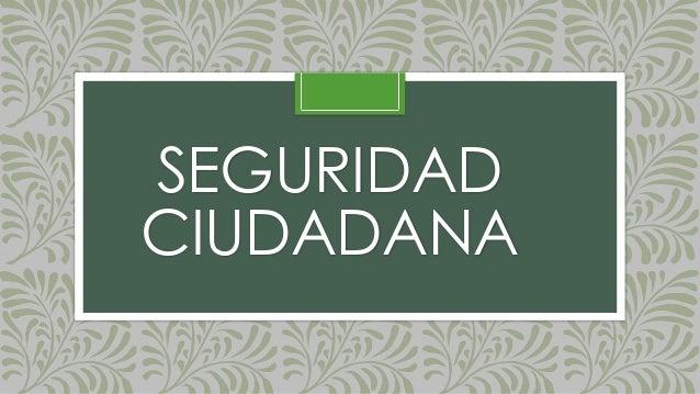 SEGURIDAD CIUDADANA
